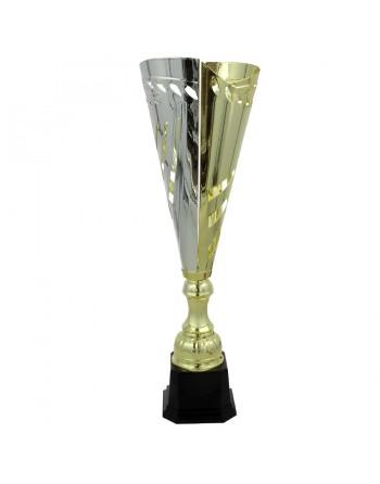 Puchar Tryumf 3112
