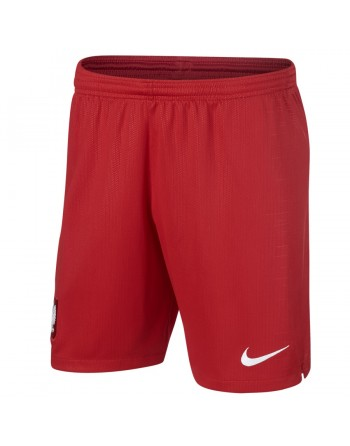 Spodenki Nike Poland POL Y...