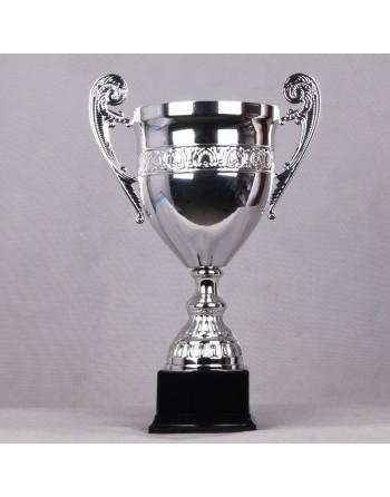 Puchar GT
